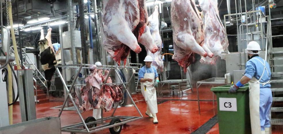 El Matadero Central incorpora un servicio de entrega de carne a domicilio