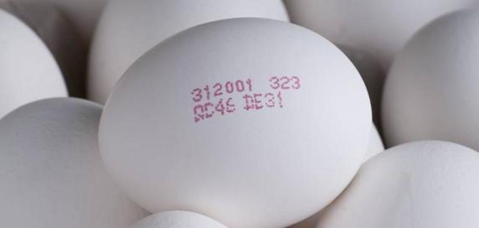 Lidl renuncia a vender huevos de gallinas enjauladas
