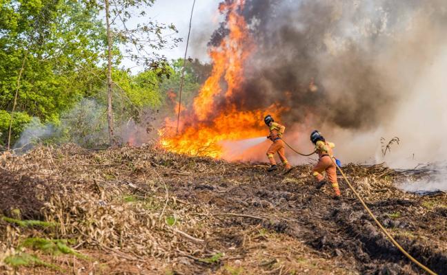 El fuego se cebó con Llanes y Piloña, con 2.115 hectáreas afectadas en 2017