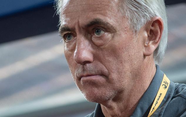 Van Marwijk será el seleccionador de Australia en Rusia