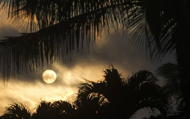 Despedido el funcionario que lanzó la falsa alerta de misil en Hawái