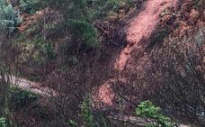 Las fuertes lluvias provocan un nuevo argayo en Salinas