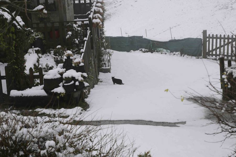 La nieve cubre las montañas del Oriente asturiano