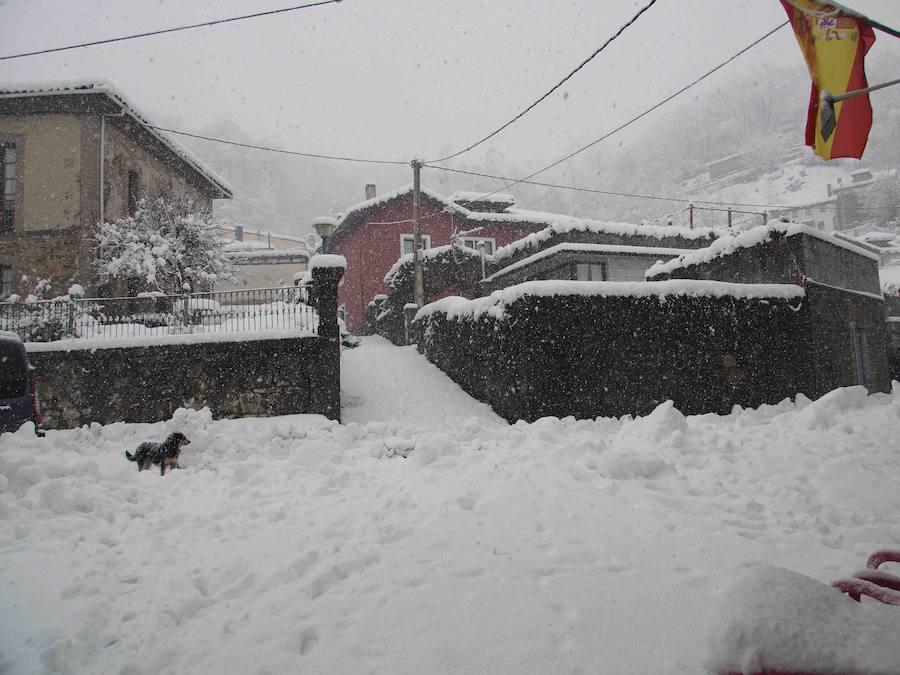 La nieve cubre el concejo de Ponga