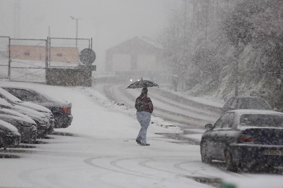 El ola de frío tiñe Asturias de blanco