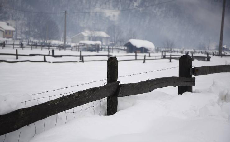 Las imágenes que deja el temporal de nieve en Asturias