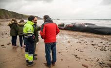Ocho horas de 'operación ballena'
