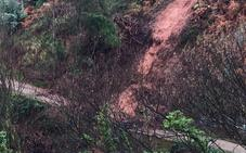 AZSA elabora un estudio sobre la estabilidad de la ladera de Pinos Altos