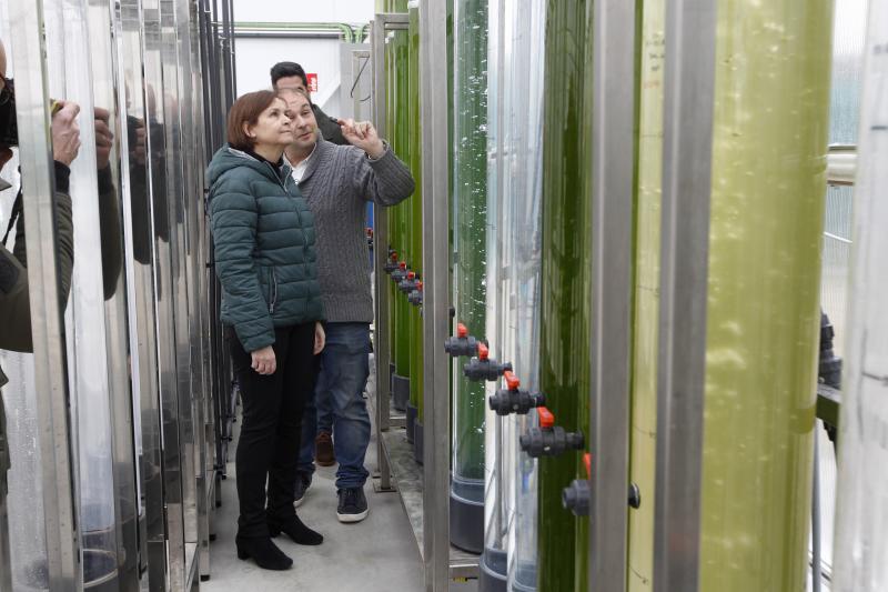 Carmen Moriyón visita Neoalgae