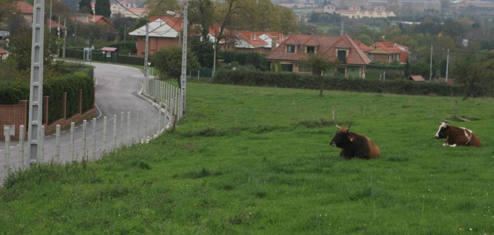 El TSJA rechaza indemnizar a una constructora por los gastos del fallido plan de Castiello