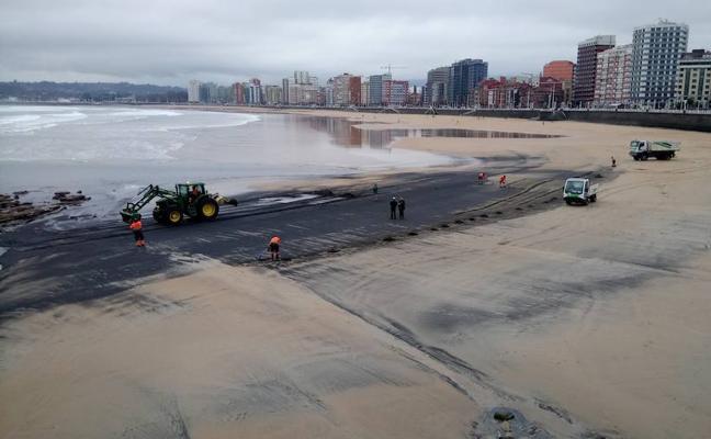 Gijón pide a la Universidad un nuevo estudio sobre el carbón de la playa de San Lorenzo