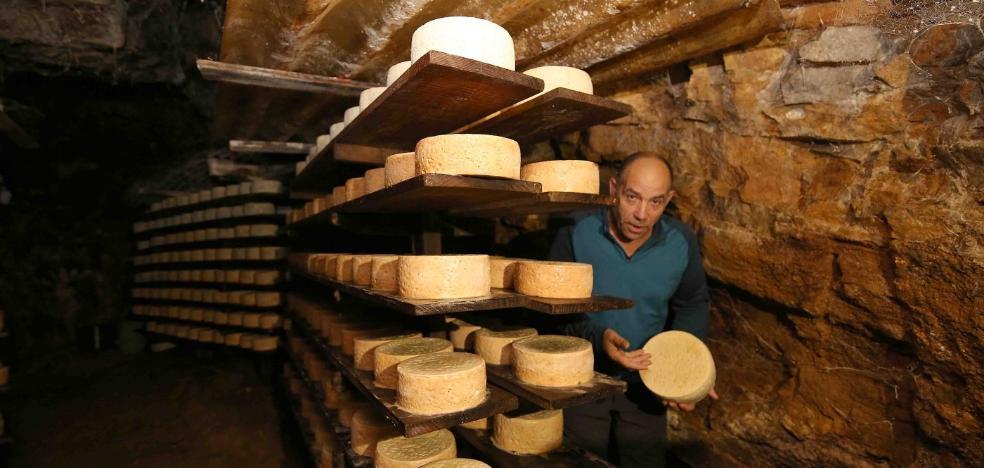 La producción de Cabrales cayó un 8,3% en 2017, con 40.000 kilos menos