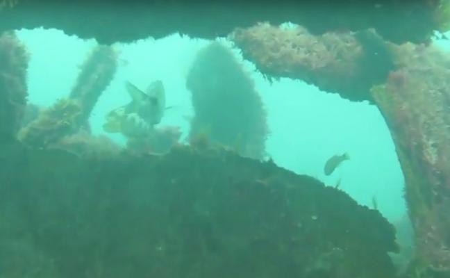Buzos aseguran que aún quedan restos del 'Castillo de Salas' en el fondo marino