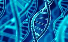 Dos genetistas asturianos participan en un estudio que identifica nuevos genes implicados en la esquizofrenia