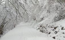 El suroccidente asturiano, en aviso amarillo por nevadas de hasta seis centímetros