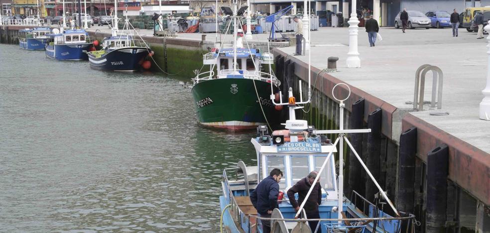 Los pescadores vaticinan un flojo inicio de la campaña de xarda por la mala mar