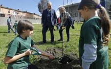 Plantar árboles en lugar de contaminar