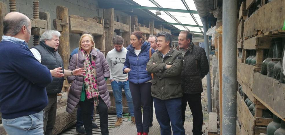 La popular Mercedes Fernández visita Naves