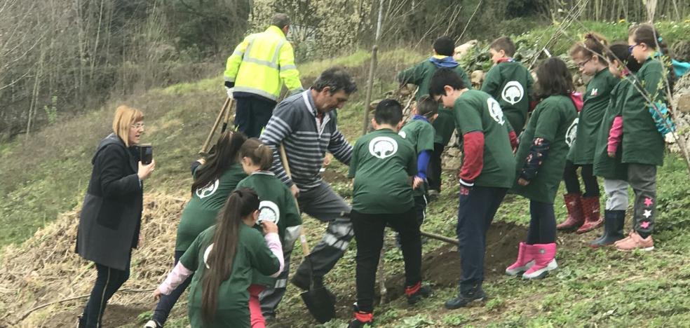 Los alumnos de Riaño plantan 35 frutales en la zona de la cementera