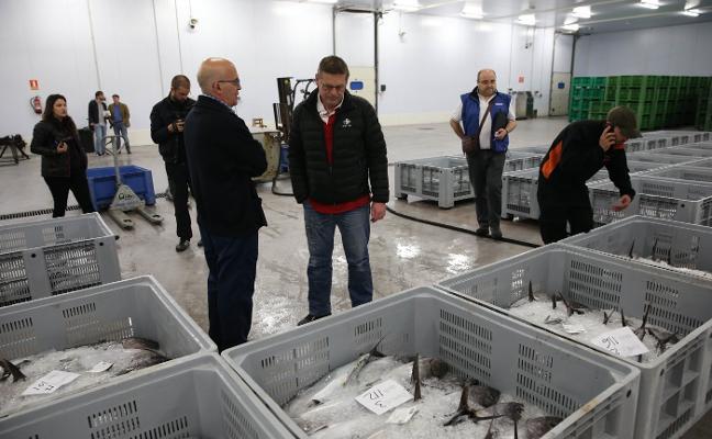 Los pescadores temen que les perjudique el reparto de cuotas de bonito, bocarte y sardina