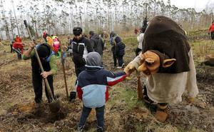 El día de los Bosques trae mil nuevos árboles para el Monte Deva