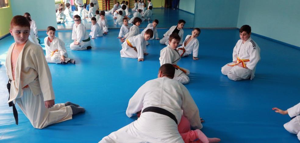Judocas de Aller y León participan en una convivencia en Moreda