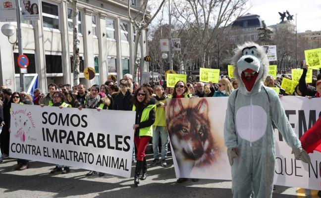 Cientos de personas se manifiestan en Madrid por la defensa del lobo