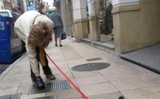 Emulsa retiró 11.383 heces de perros en Gijón durante 2017