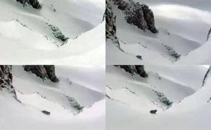 Las asombrosas imágenes de un oso en la nieve de Somiedo