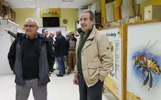 Los apicultores de Gijón critican el reparto de las ayudas a la polinización