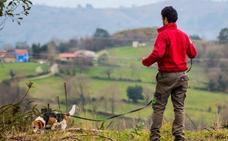 'Bruji', la perra que siguió el rastro hasta encontrar al anciano desaparecido en Salas