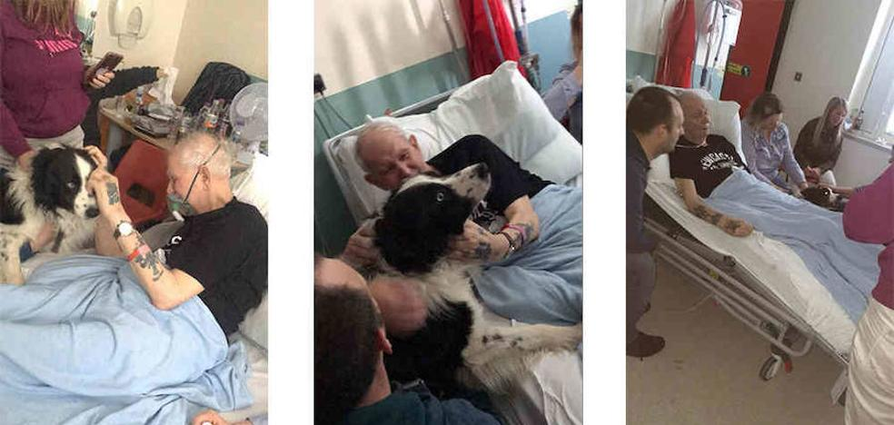 El conmovedor momento en que un abuelo moribundo cumple su último deseo