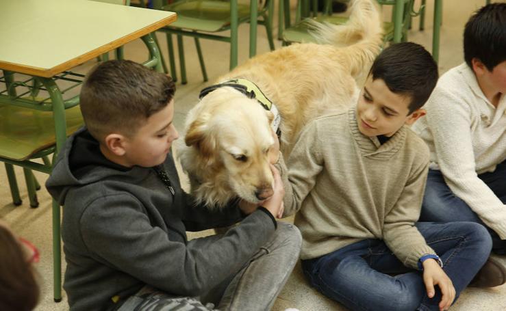 Inteligencia emocional para escolares del colegio Santa Olaya de la mano de 'Entrecanes'