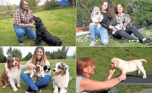 Siero, un concejo de perros