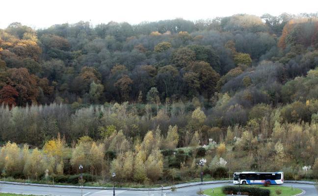El Ayuntamiento iniciará el cierre del bosque de La Zoreda el mes que viene