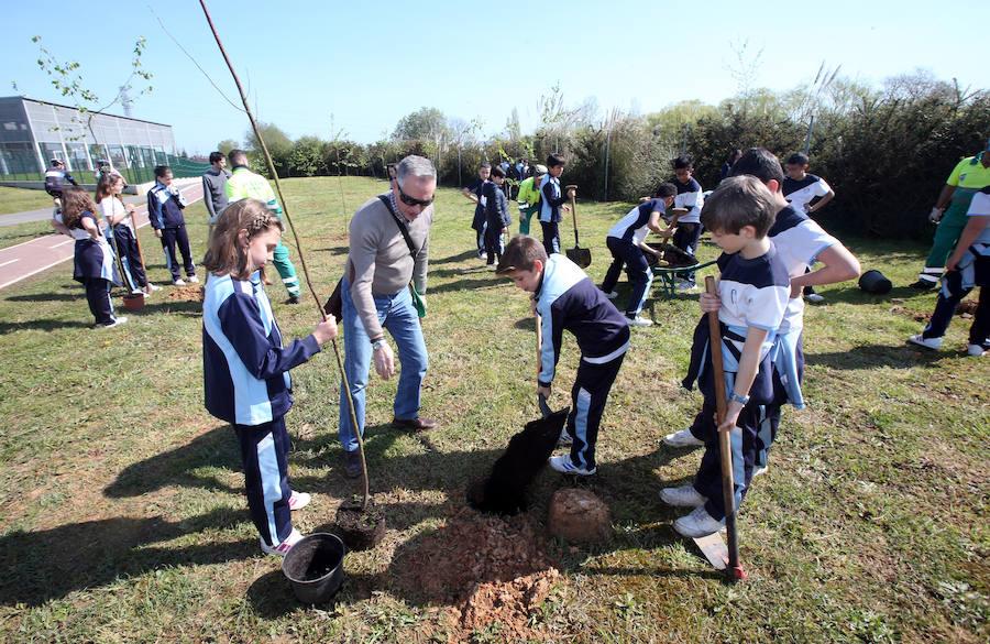 Los escolares plantan 200 árboles en la 'Semana del Árbol' de Oviedo