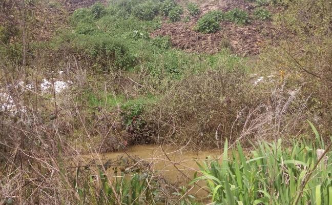 La Coordinadora Ecoloxista denuncia un vertido continuo de purines en Lugo
