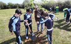 Plantar un árbol, el mejor juego