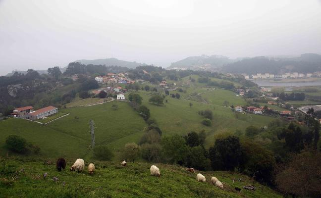 La zona rural pide que no se «criminalice» a los ganaderos por los daños de Tito Bustillo