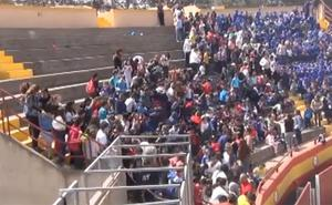 Miles de abejas atacan a un grupo de niños en Castellón durante una exhibición de la Guardia Real