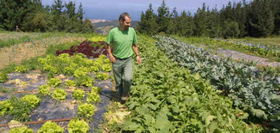 La ley de calidad alimentaria regulará la producción ecológica