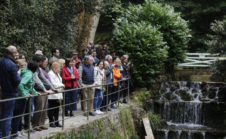 Casi 5.000 personas para celebrar el cumpleaños del Botánico