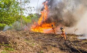 Dos detenidos por incendios forestales en Asturias