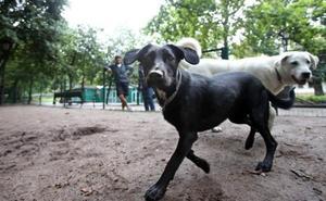 El PP pide acotar una zona para perros en el parque de la Fábrica de Loza