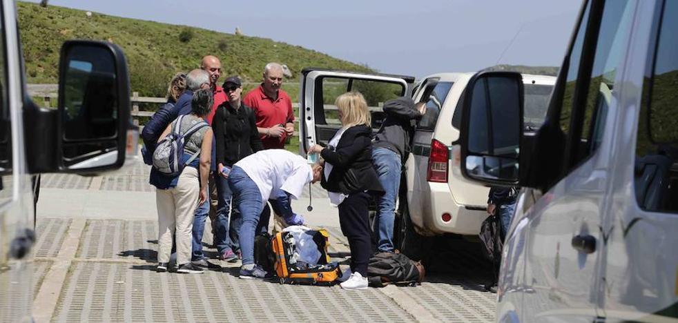 Herido en la cabeza un niño de siete años tras resbalar junto al lago Ercina