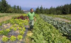 Asturias teme perder 4,6 millones con la nueva Política Agraria Común
