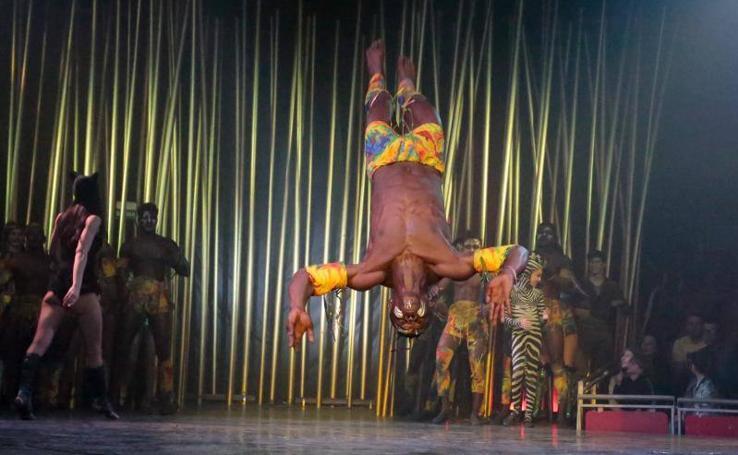 Circo sin animales en Gijón