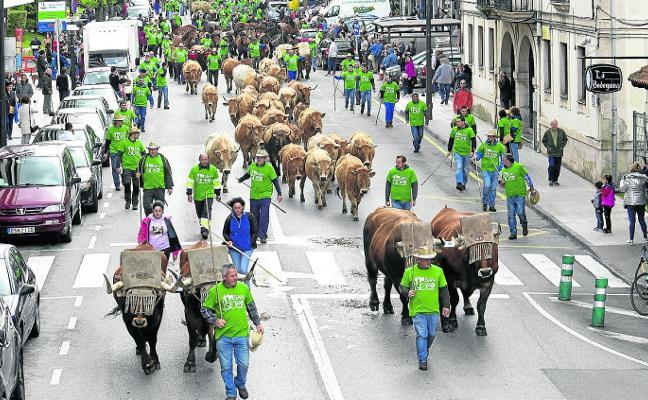 La Feria de San Isidro crece un 60%
