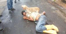 La tremenda borrachera y el perro 'escolta' que defiende a su dueño
