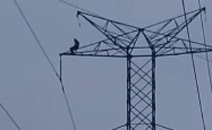 Las impactantes imágenes de un joven que muere electrocutado en una torre de alta tensión